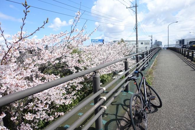 クロスバイクで金沢をぶらりサイクリング、スポーツバイクの楽しみ方